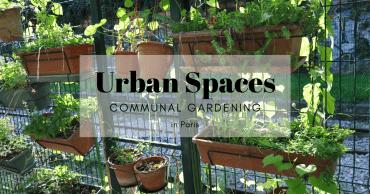 communal gardening in Paris